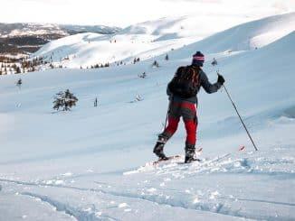 skier walking