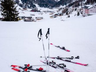 skis & poles in snow